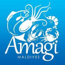 Amagi Maldives Private Limited